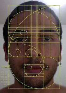 Golden ratio human face