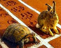 Tortoise_and_the_hare